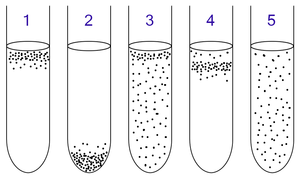 Baktériumok folyékony tápközegben