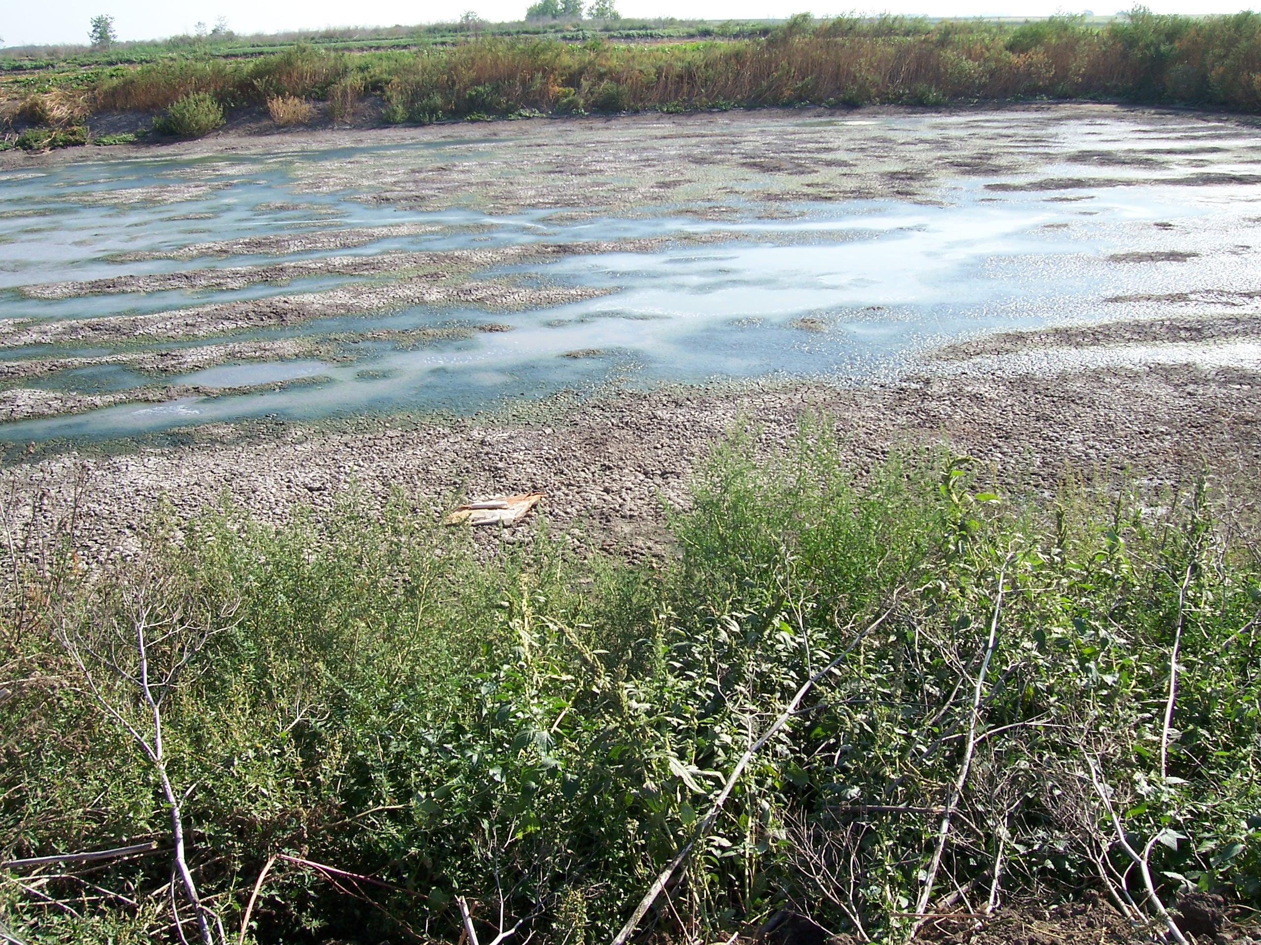 eliszapolódott földmedrű tározó