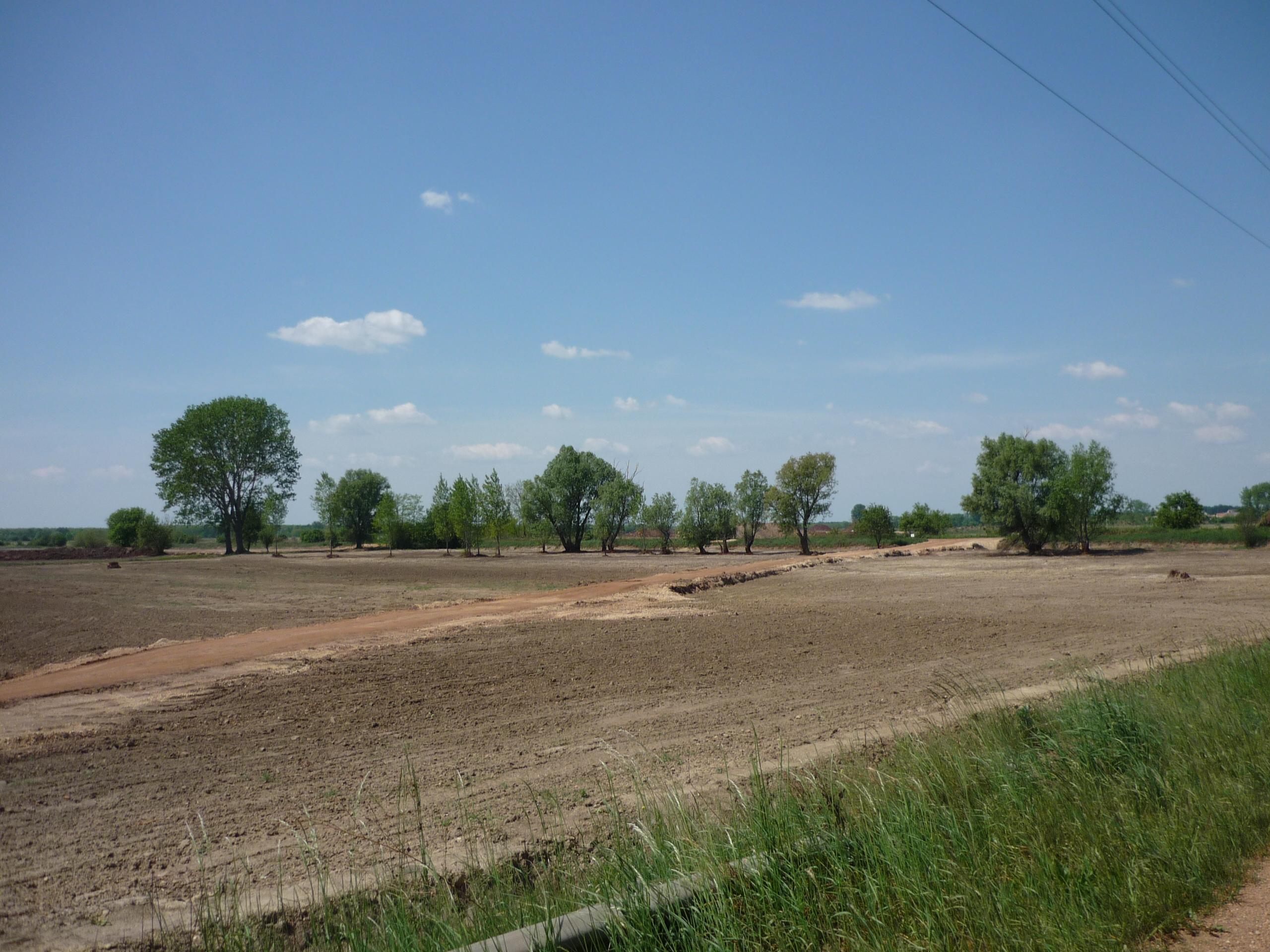 Letakarított szántóföld látképe