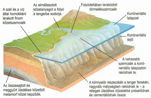 Tengeri üledékes kőzet