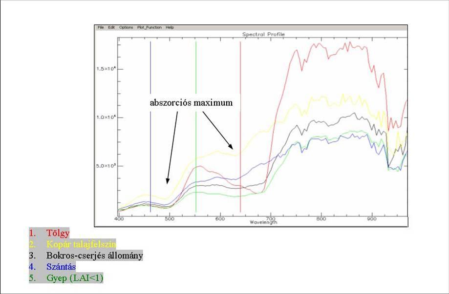 A vizsgált terület abszorpciós spektruma