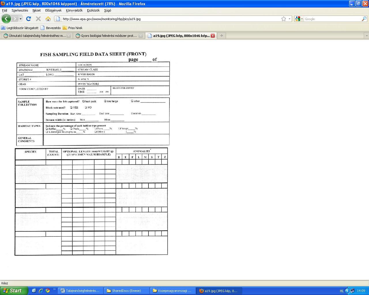 Hal mintavételezési adatlap