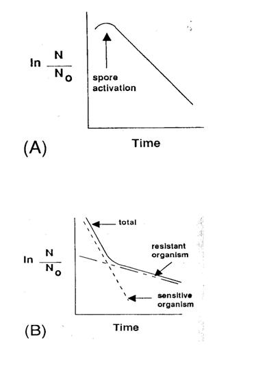 Mikrobapusztulás-nonlinearitás