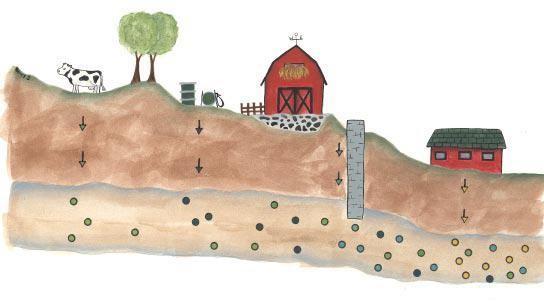 Talaj és talajvíz