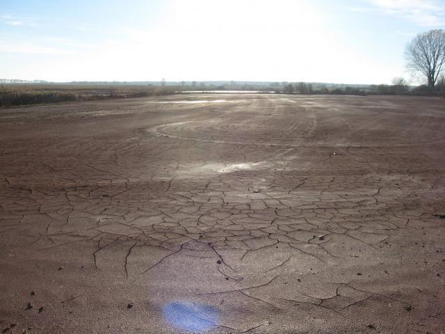 Vörösiszap talajon