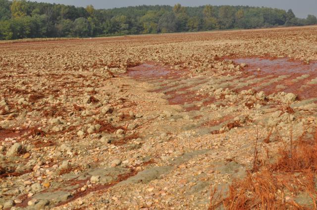 Vörösiszapos talaj