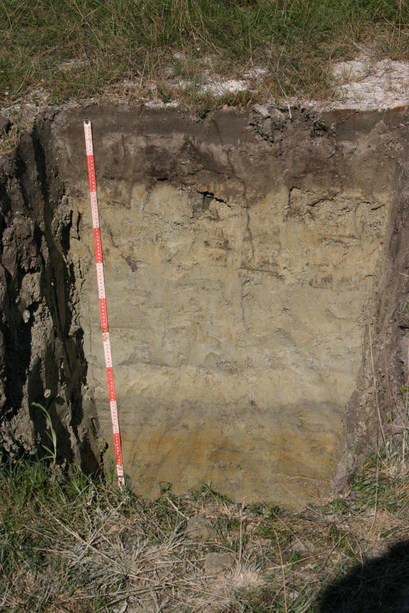 talajképző tényezők